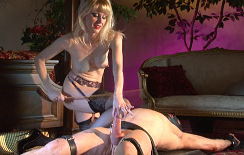 All about CBT 3 BDSM movie